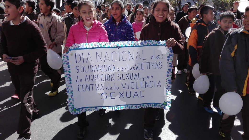 Marcha de solidaridad contra victimas de violencia se hace sentir en Tarija (VIDEOS)