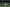 Boca clasifica a la final de Copa Libertadores; enfrentará a River