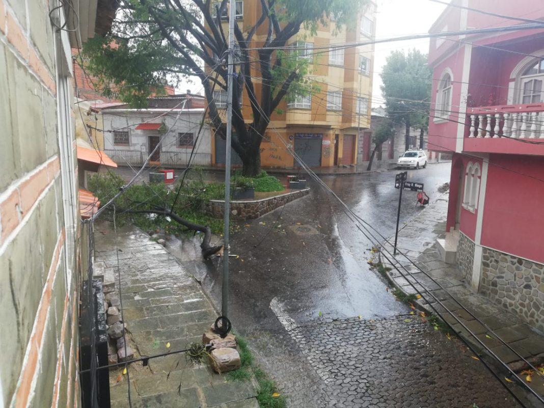 Los estragos climáticos en Tarija  tienen origen en la deforestación