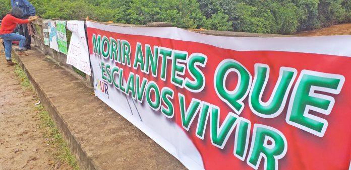 Federación Campesina de Tarija emite resoluciones sobre el Prosol, SUS y Tariquía
