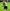 Wilstermann rescata un empate en Colombia