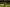 Wilstermann no pudo con el potencial ofensivo de Boca