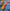 Tórrez apunta a los Juegos Olímpicos Tokio 2020