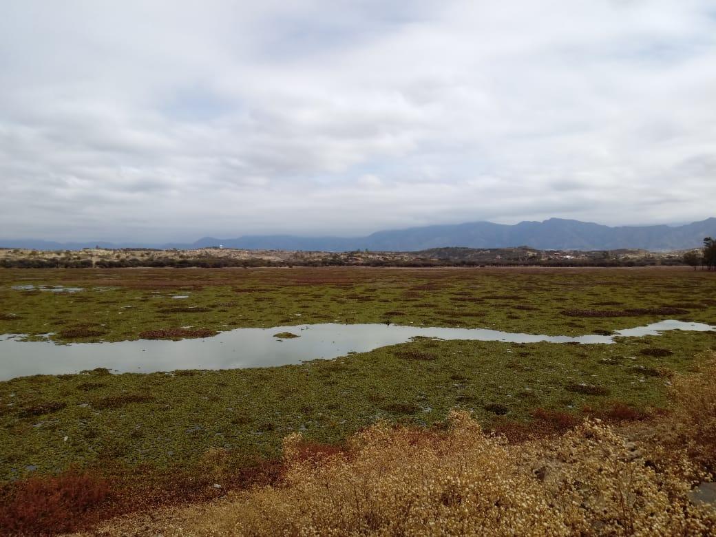 Alistan un convenio para la limpieza del lago San Jacinto de Tarija